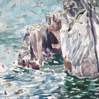 watercolour painting of bass rock birds